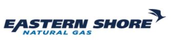 Eastern Shore logo